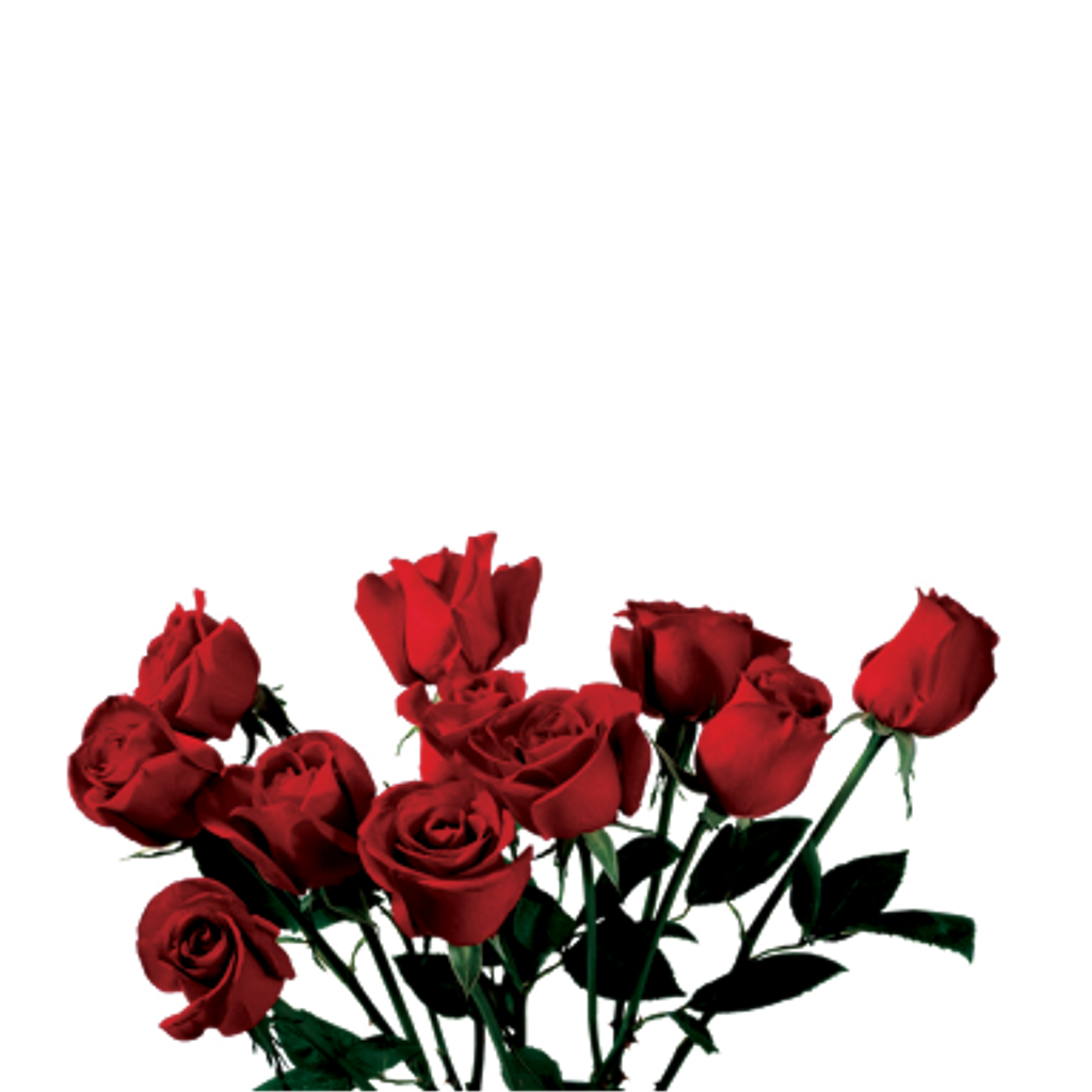 Red aesthetic png. Rose tumblr s night