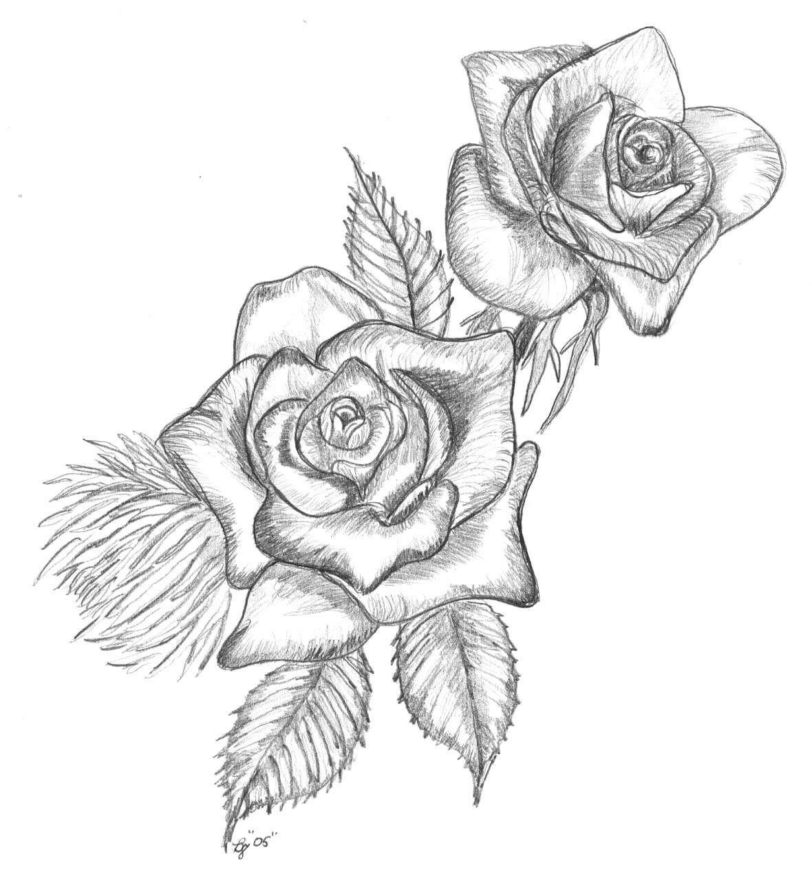 Tumblr clipart rose. Hoontoidly roses drawing images
