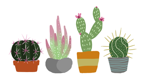 Tumblr clipart succulent. Cacti drawing shockingblankets