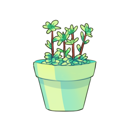 Plant png tumblr. The succulents are my