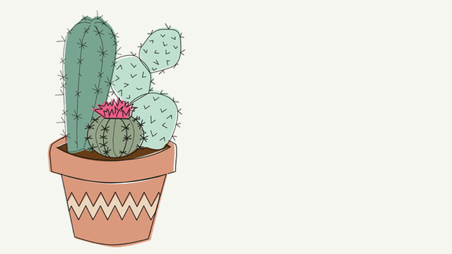 Tumblr clipart succulent. Lovers and cactus