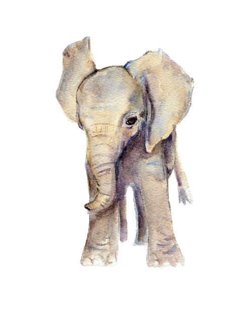 Tumblr elephant png. Transparent made by the