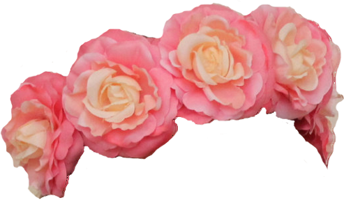 Sticker transparent flower crown. Wow references image