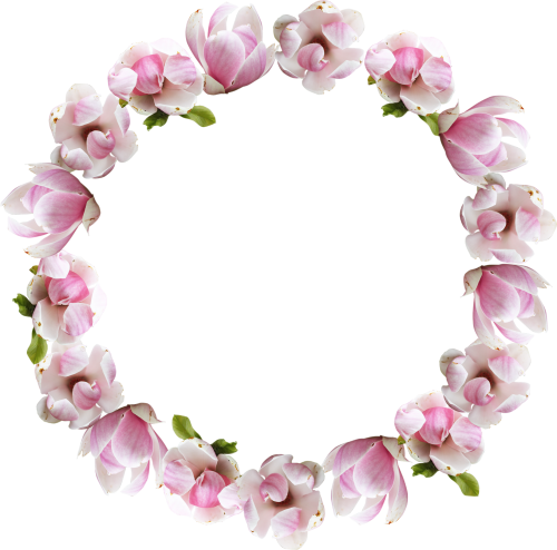 Tumblr flowers png. Flower crown transparent pictures