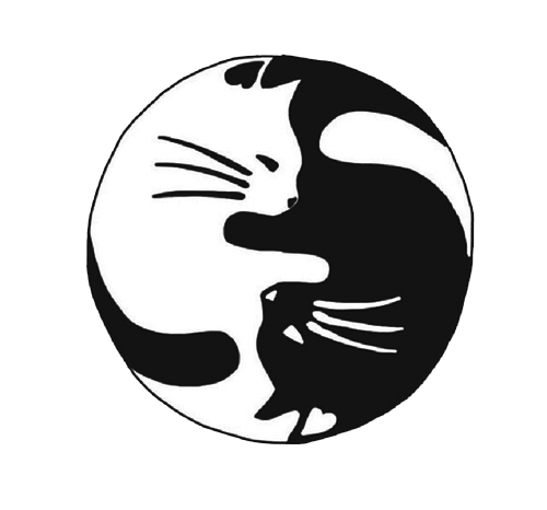 Tumblr png black. Image about in cat