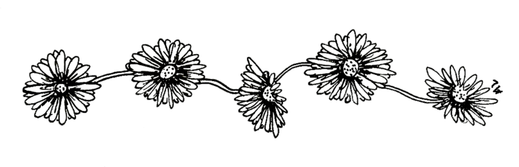 Flower tumblr png. Image black and white