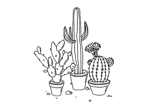 cacti collage