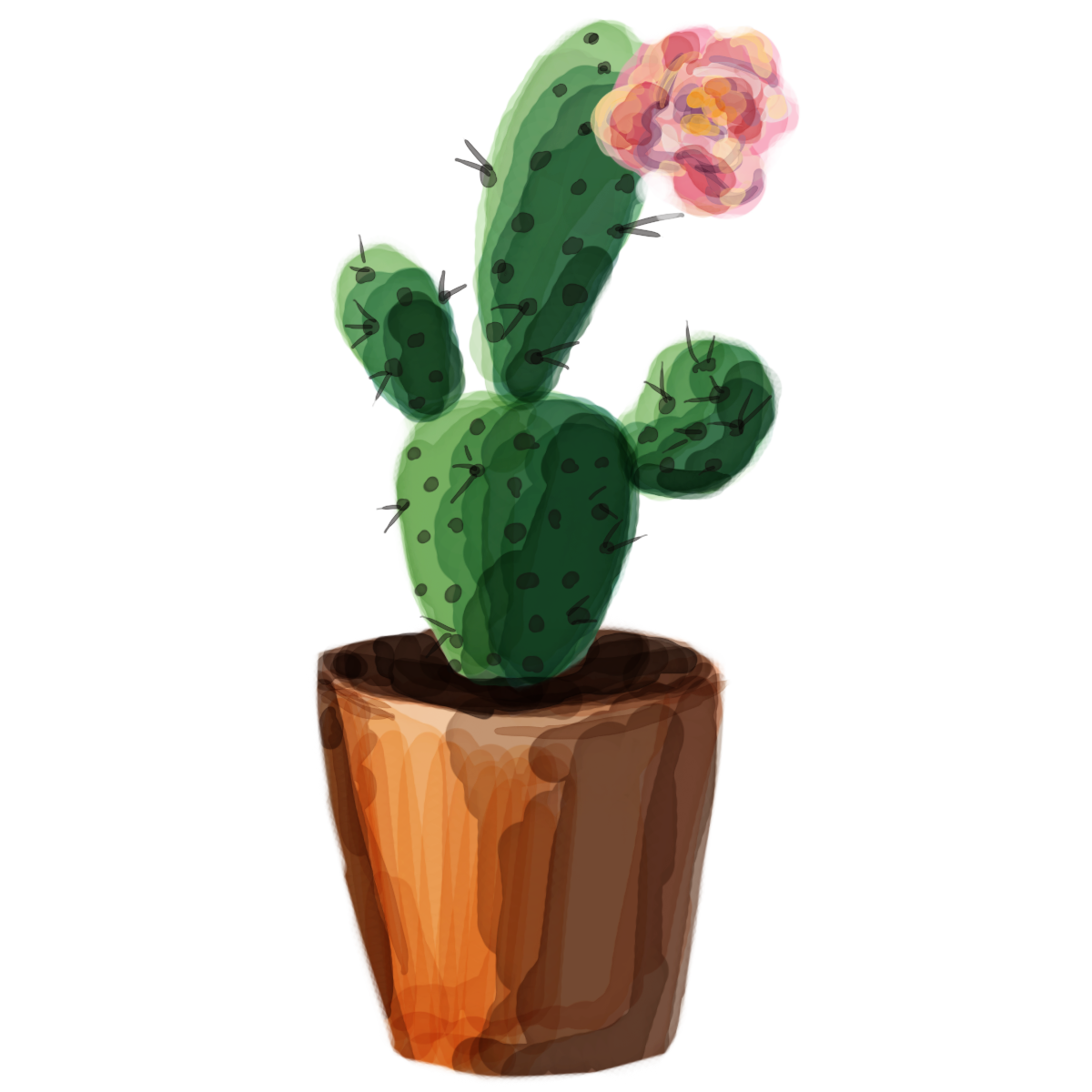 Tumblr png cactus. Pin by charlotte yaklich