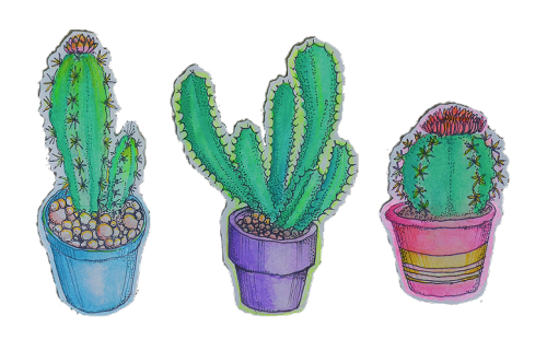Tumblr png cactus. Plants transparent artists on