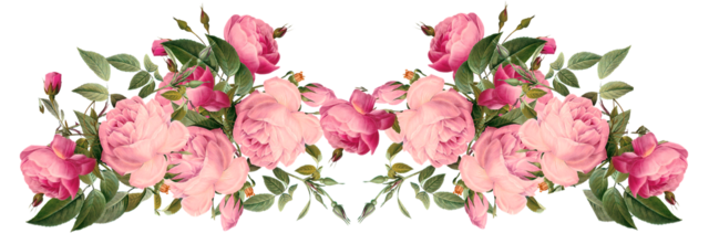 tumblr png flower