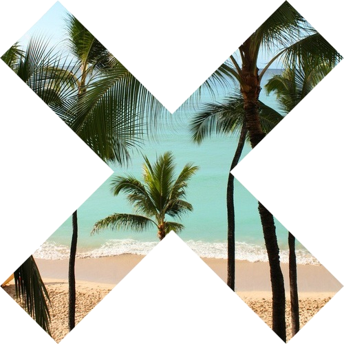Tumblr png palm tree. Paradise oh lord