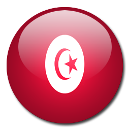 Tunisia flag png. Icon download rounded world
