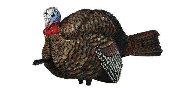 Turkey. Premium decoys shop lcd