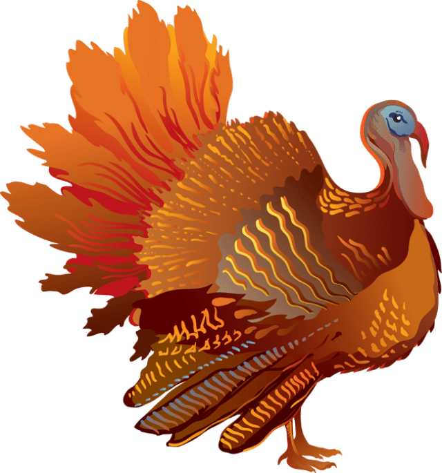 Turkey clip art colorful. For the fall season