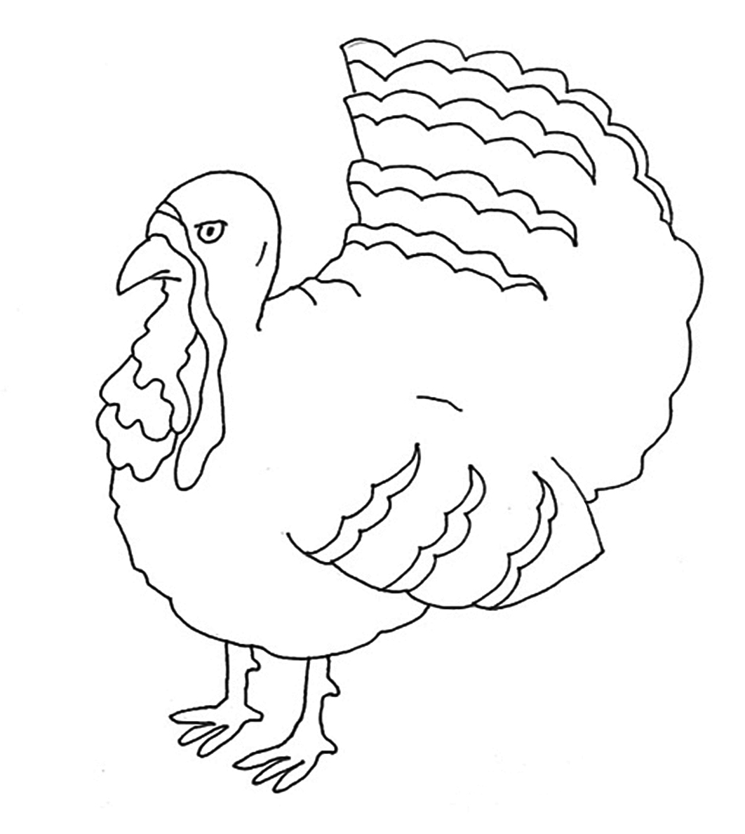 Turkey clip art coloring page. Thanksgiving pages bird