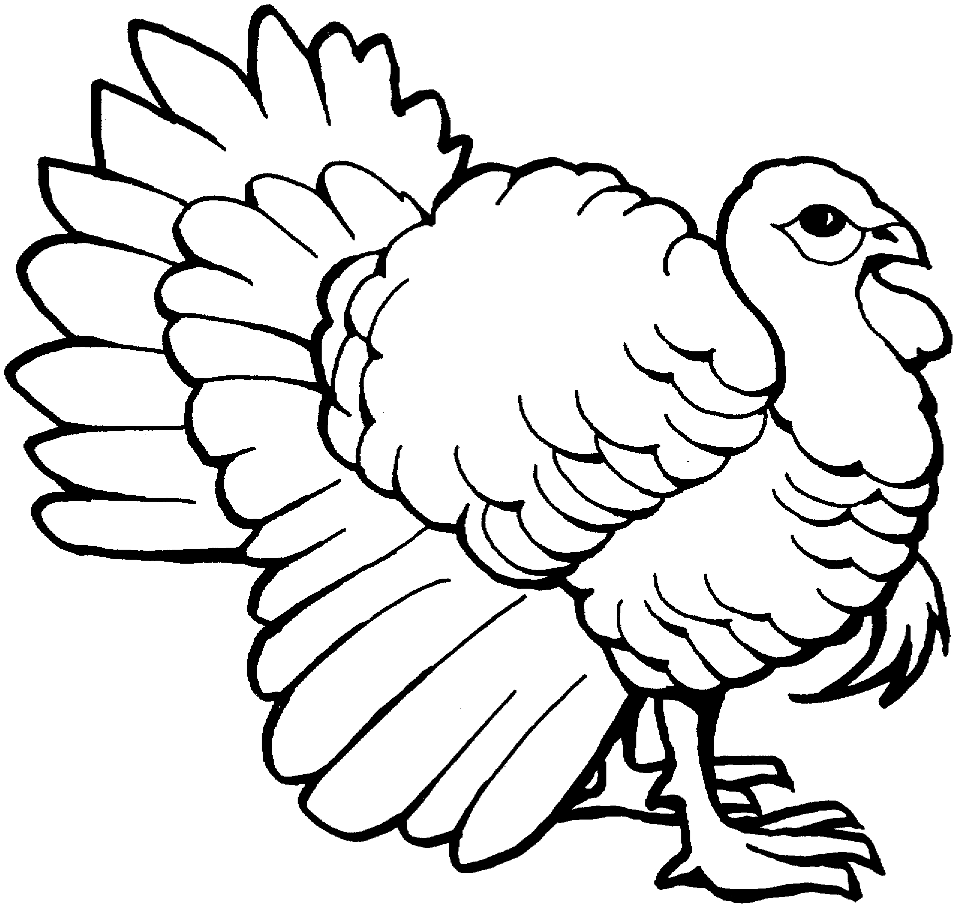 Turkey clip art outline. Best of clipart black