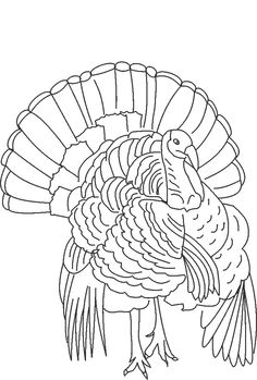 Animal coloring pages printables. Turkey clip art realistic vector free download