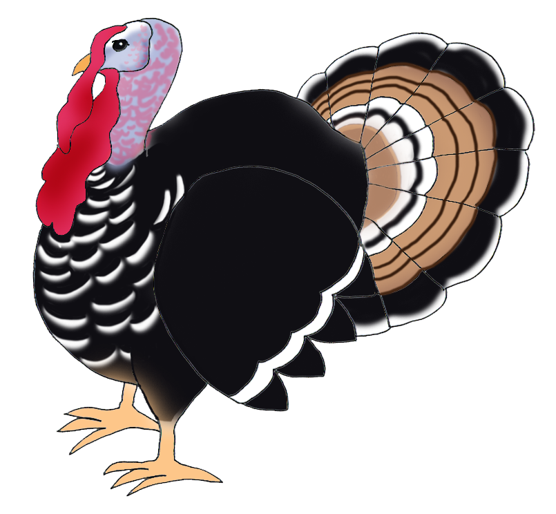 Turkey clip art realistic. Happy thanksgiving clipart pumpkins