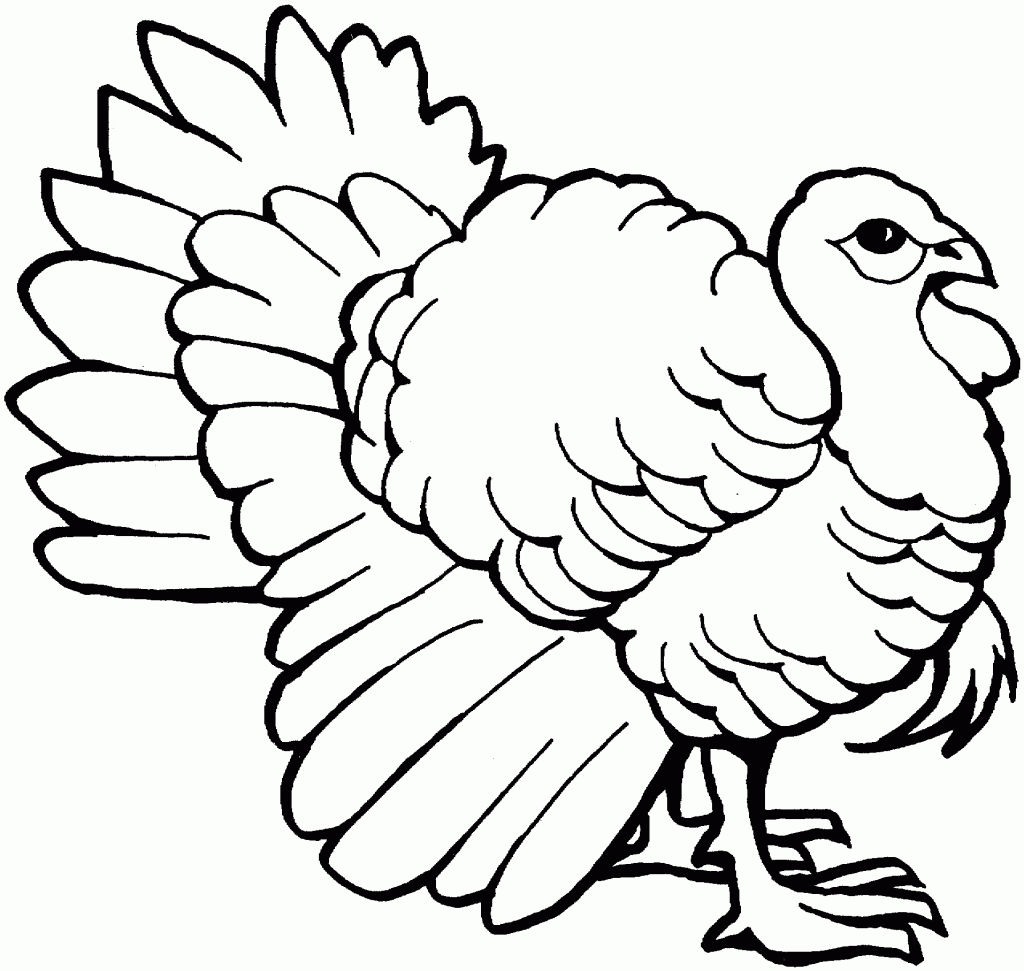 Turkey clip art simple. Drawing to color clipart