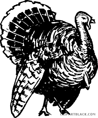 Turkey clip art wild turkey. Clipart clipartblack com animal