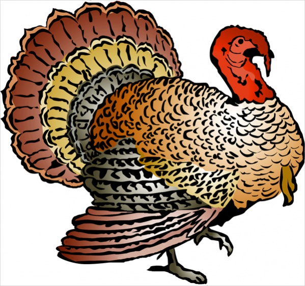 Turkey clip art wild turkey. Cliparts vector eps