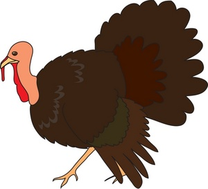 turkey clip art wild turkey