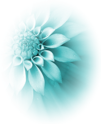Turquoise flower png. Image psd animal jam