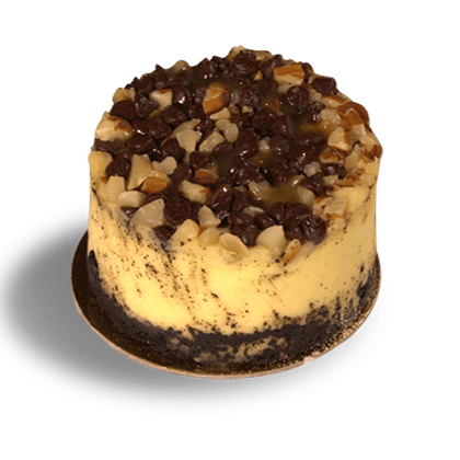 Turtle cheesecake png. Sugar butter flour bakery