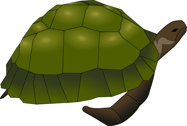 Tortoise vector galapagos. Turtle clip art at