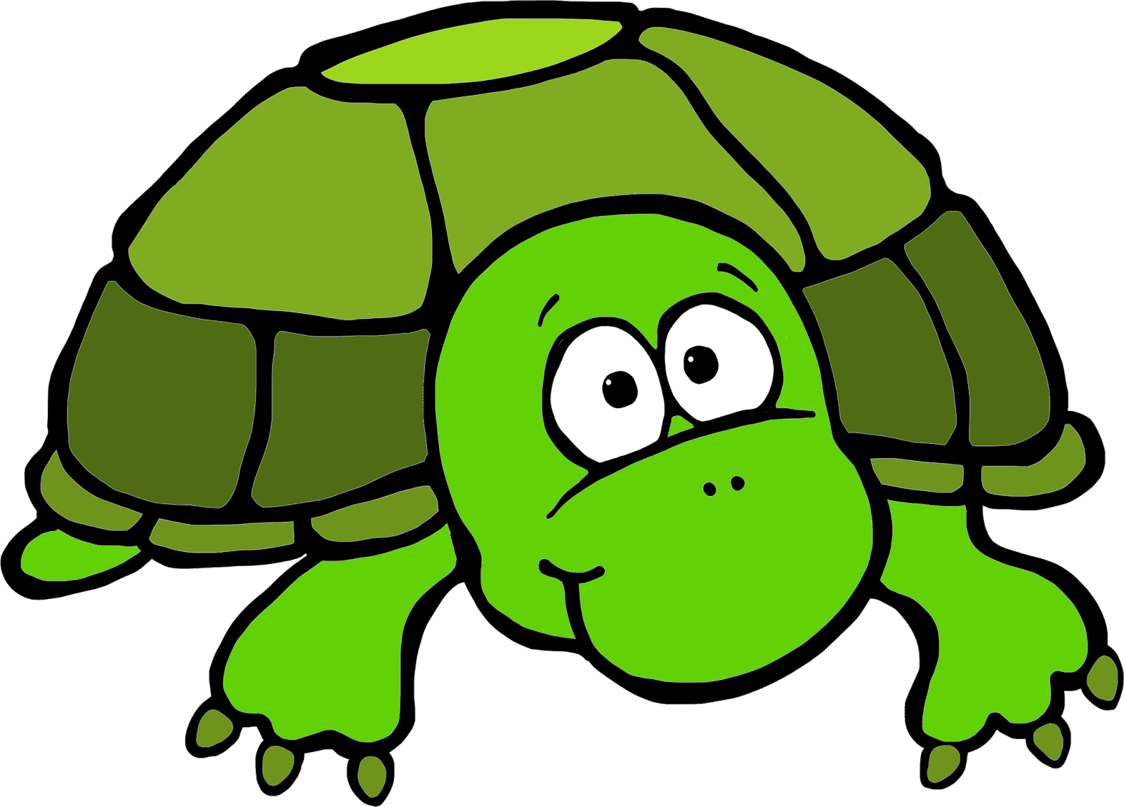 Turtle clip art png. Baby sea clipart at