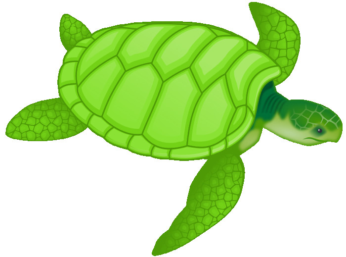 Cute clip art free. Turtle clipart royalty free stock