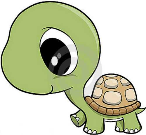 Turtle clipart bow. Baby
