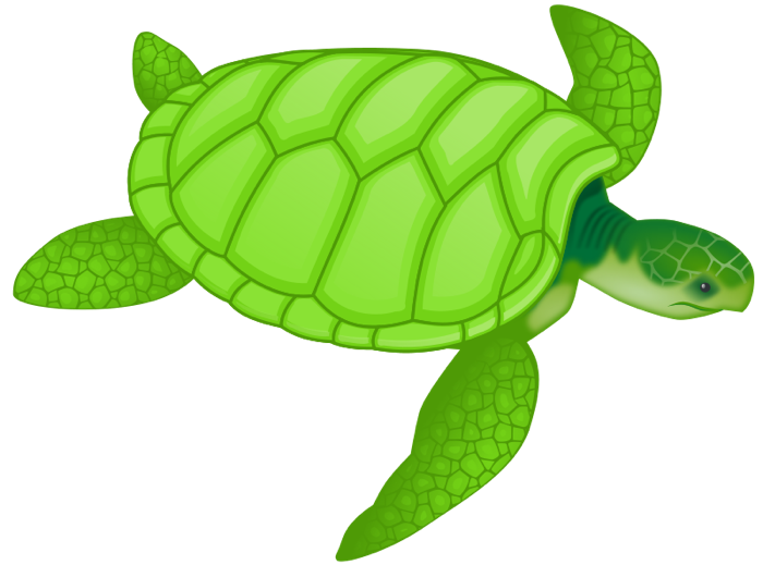 Turtle clipart hawksbill turtle. Free and animations sea