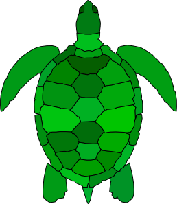 Tortoise vector green. Turtle clip art at