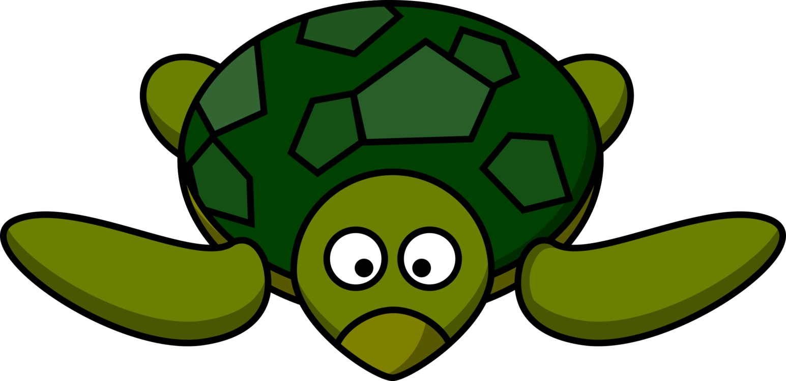 Turtle drawing png. Green sea free commercial