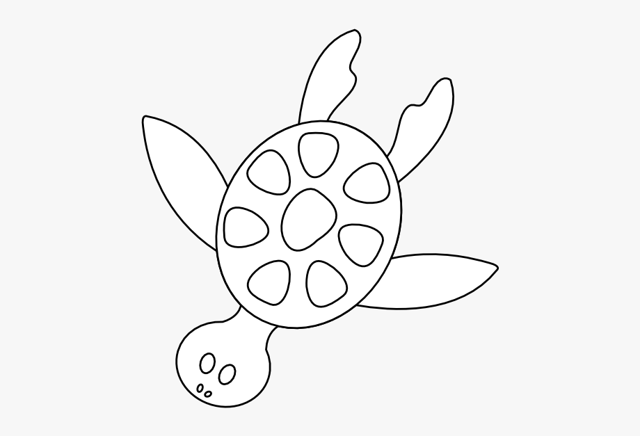 Turtle muzzle. Download for free png