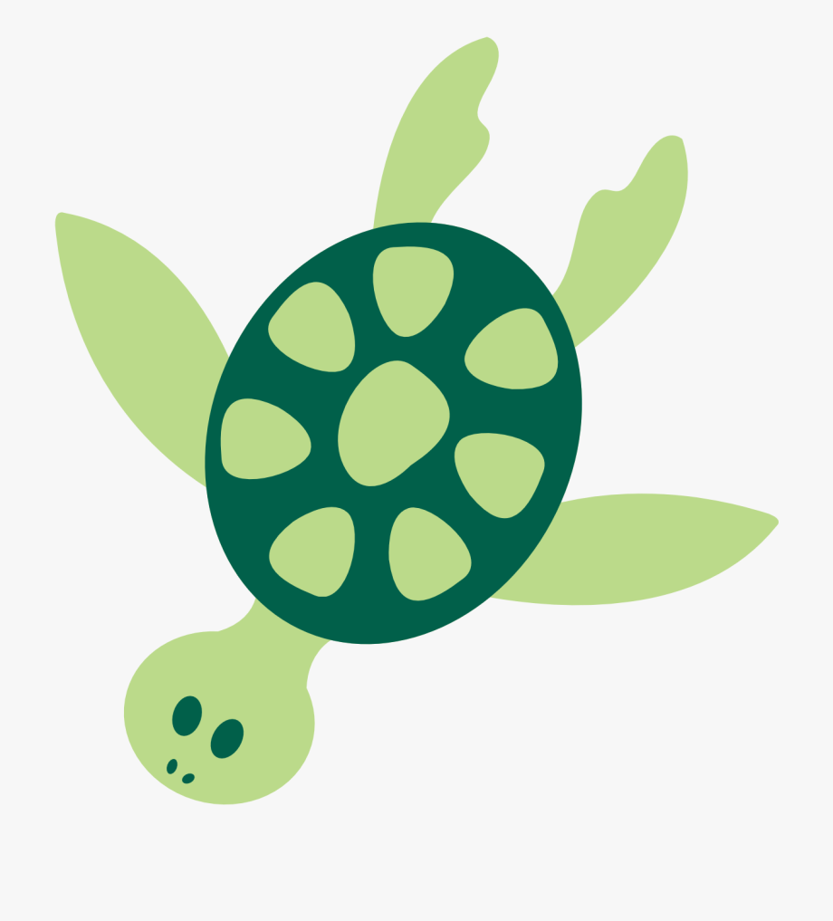 Turtle paw. Sea clipart png free