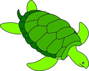 Turtles clipart animation. Animated turtle