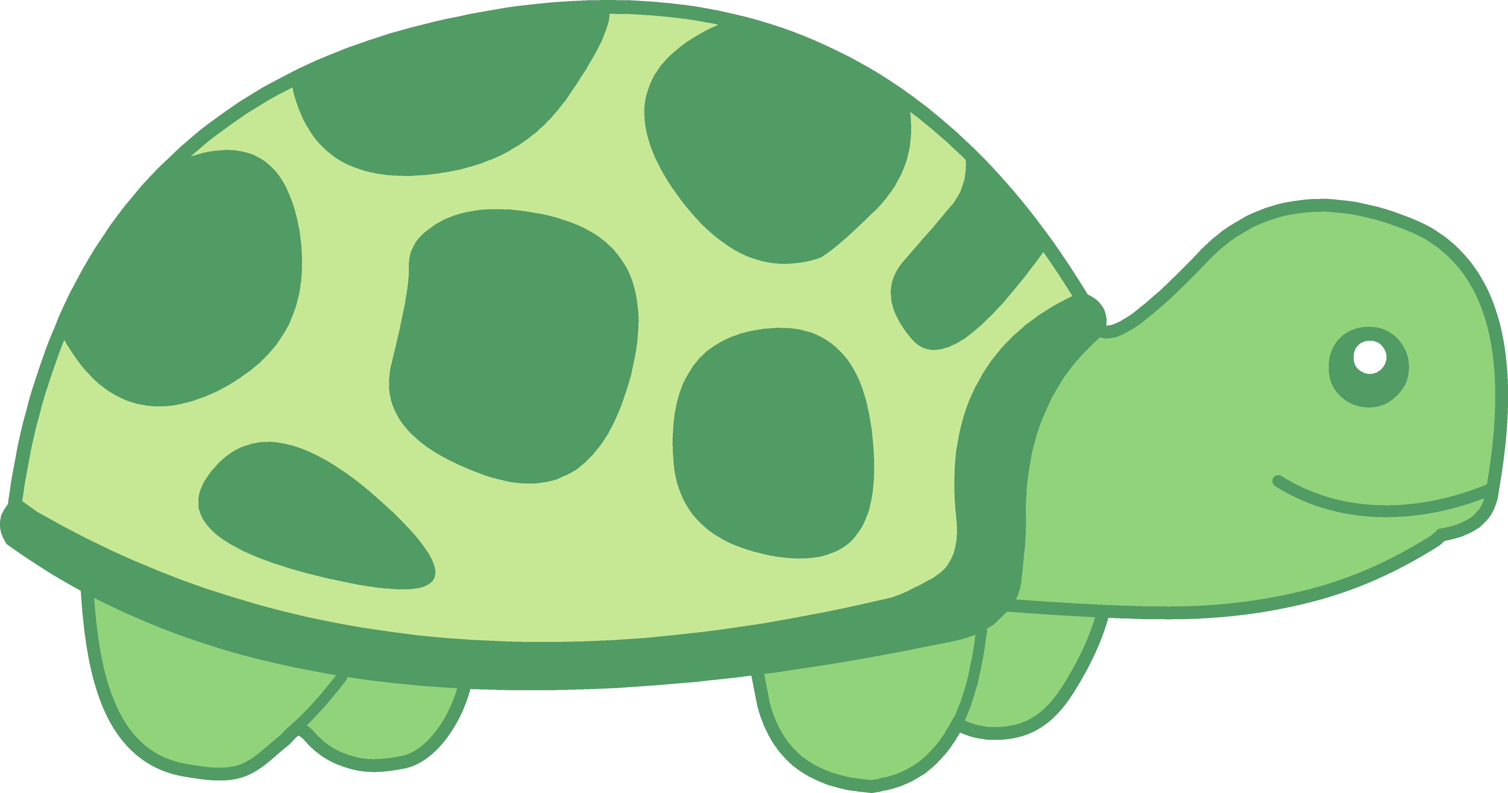Turtles clipart design. Little green turtle free