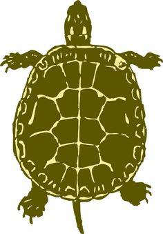 Smaller and on the. Turtles clipart foot jpg freeuse library