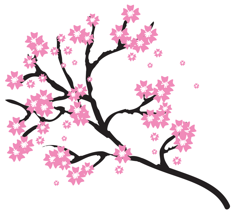 Twig drawing cherry blossom. Branch svg stock