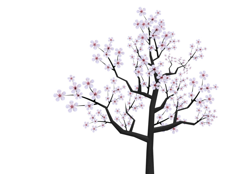 Twig drawing cherry tree. Cute flower clipart