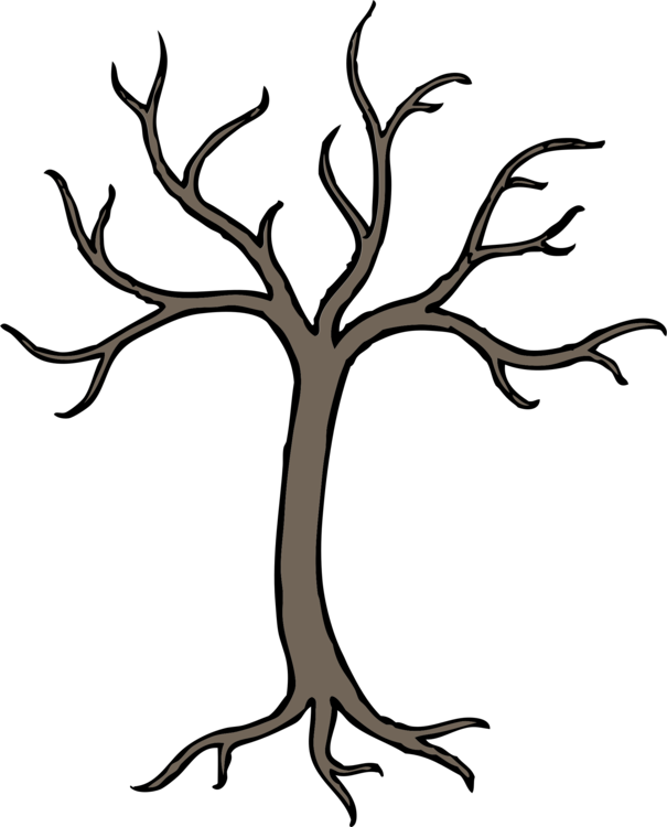 Drawing branches deciduous tree. Collection of free branch