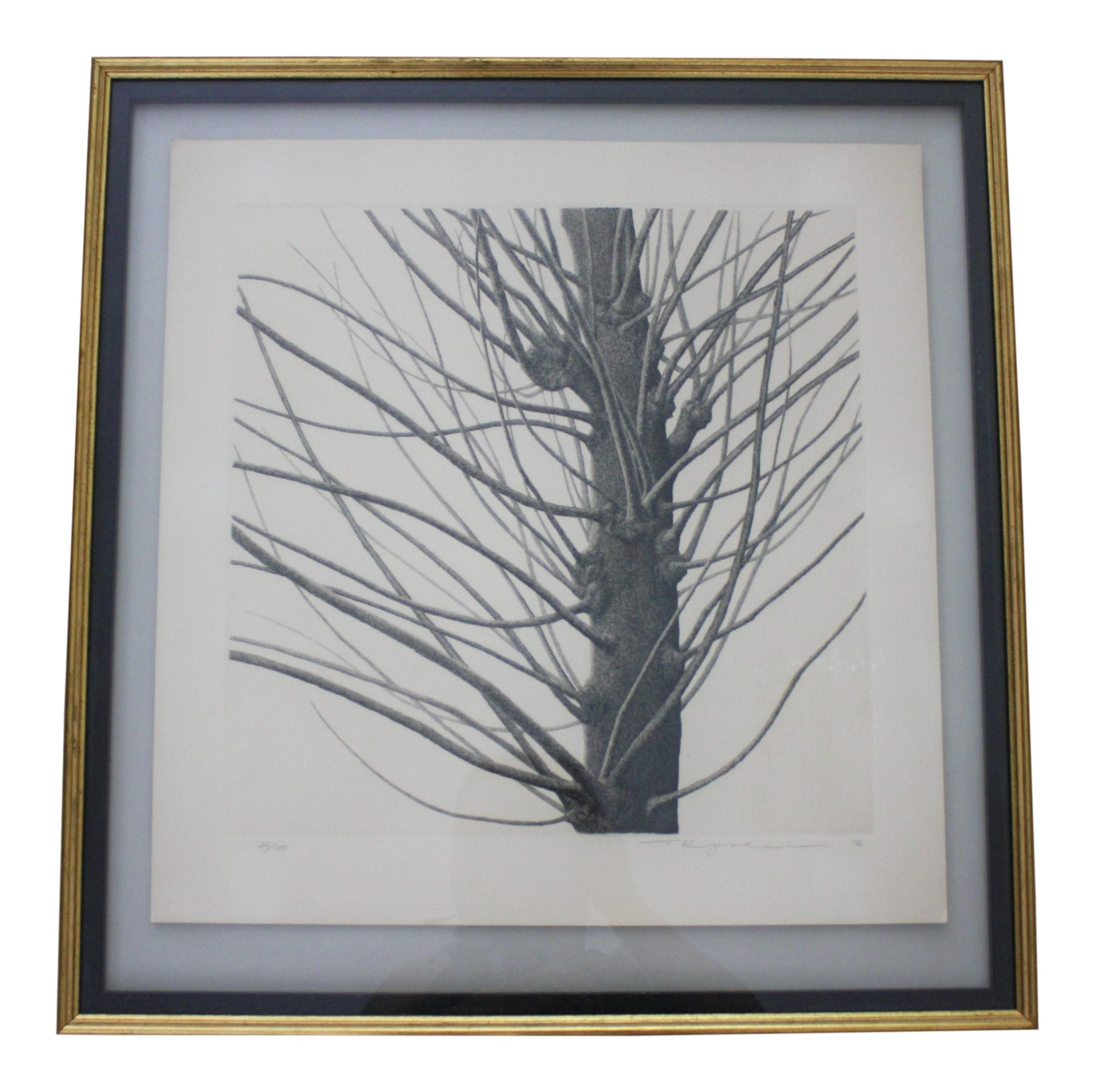 Etching drawing tree. Framed of by listed