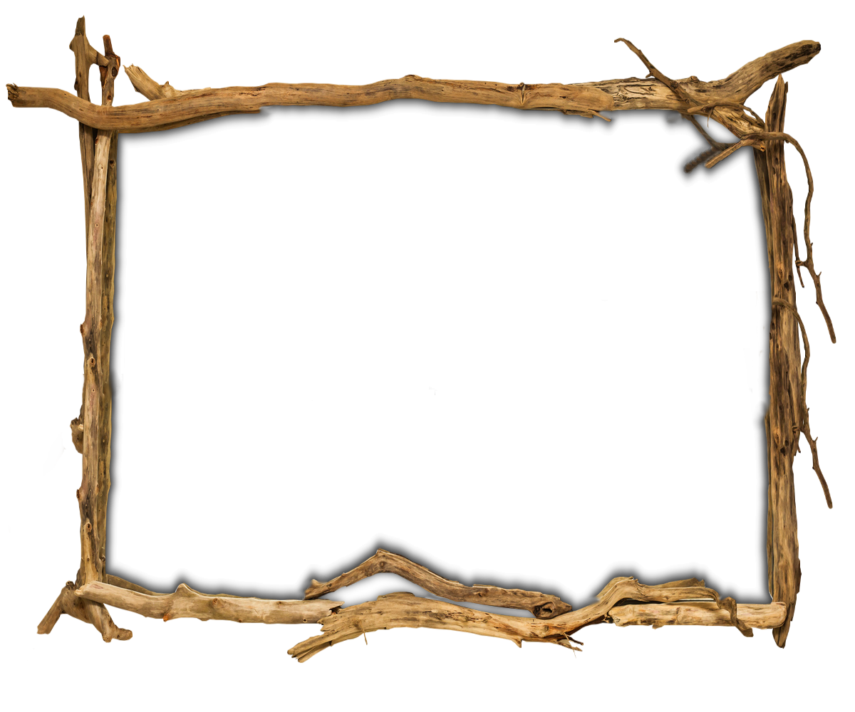 Twig frame png. Picture frames wood tree