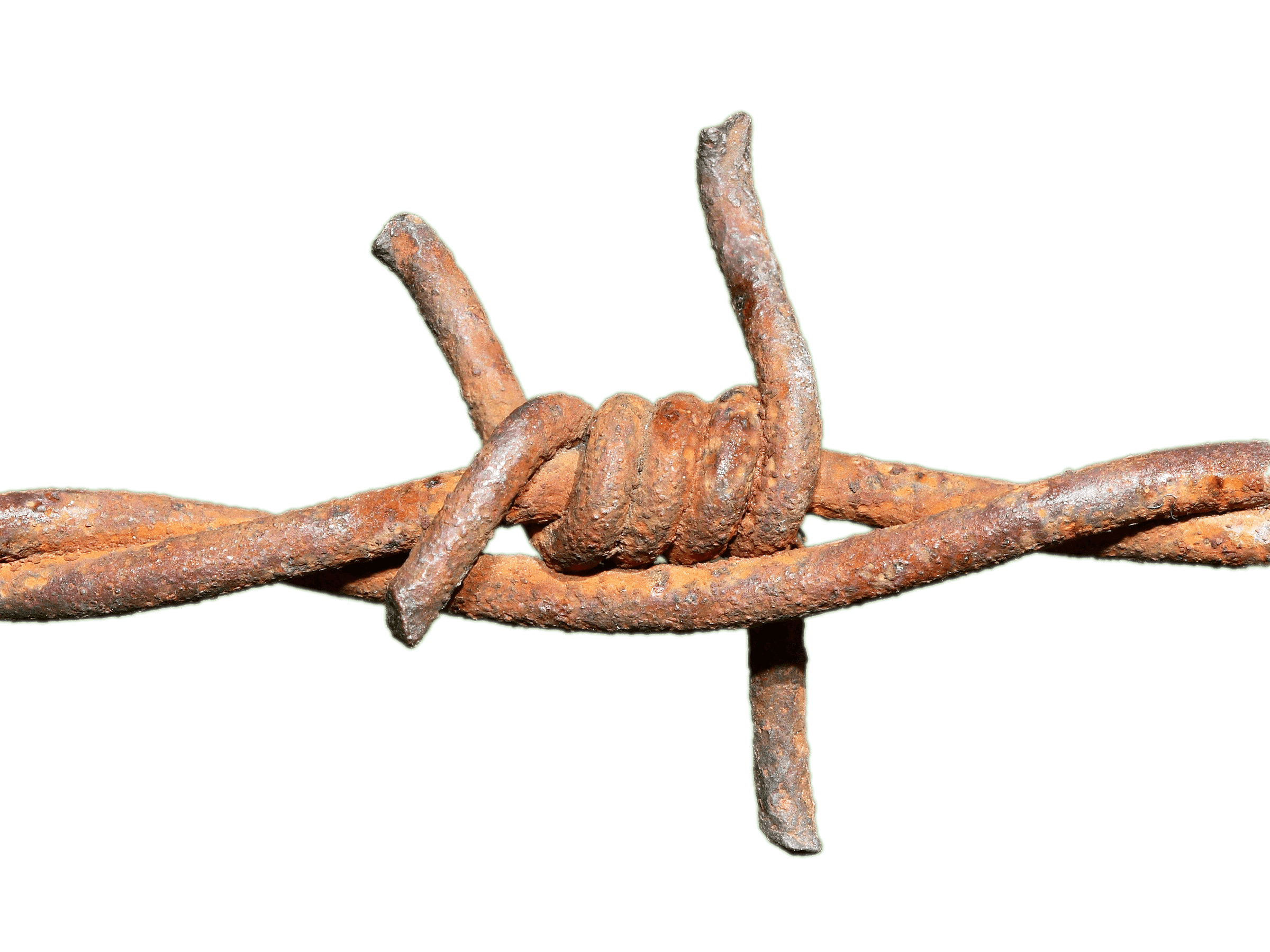 Twig stick png. Barbed wire rusted knot