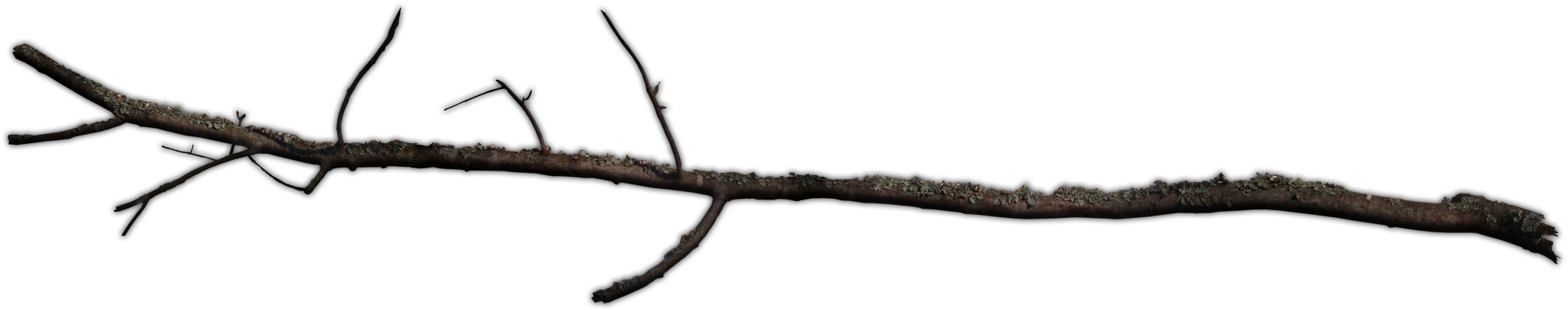 Twig stick png. Download hd dundjinni mapping