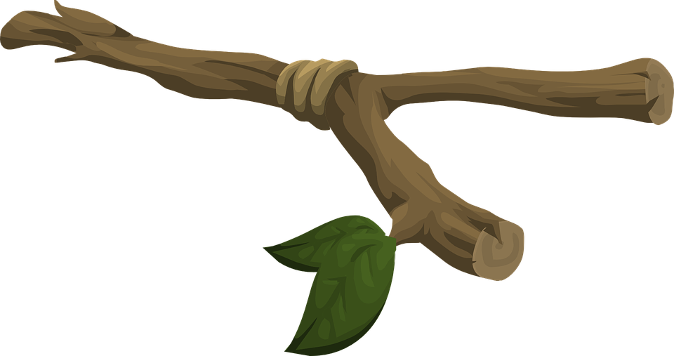 Twig vector. Clipart gallery images free