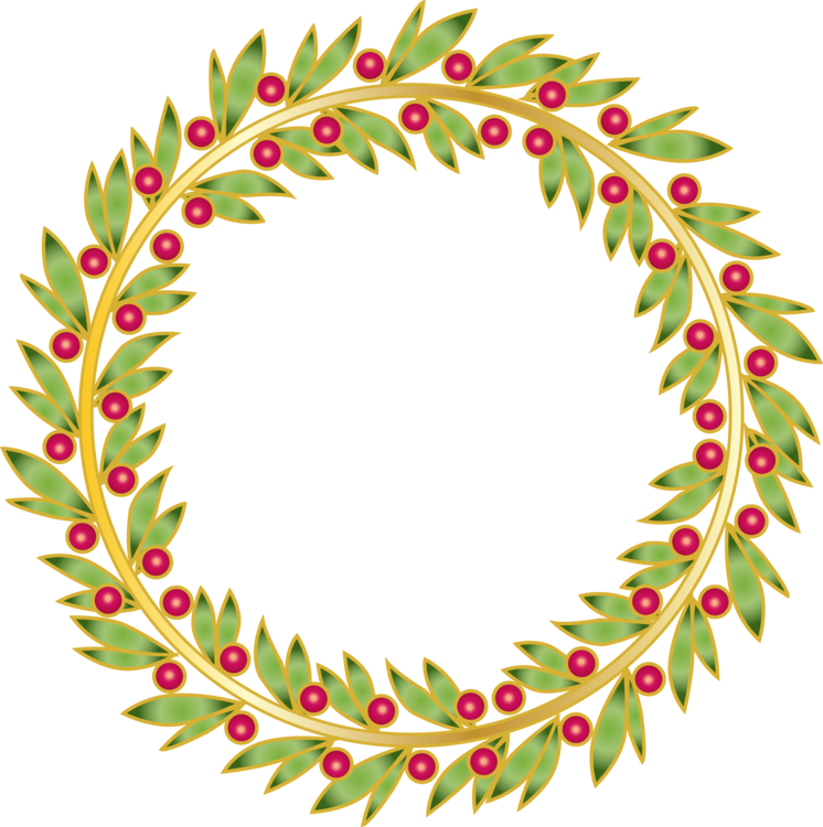 Twig vector berry wreath. Leaf branch fir christmas