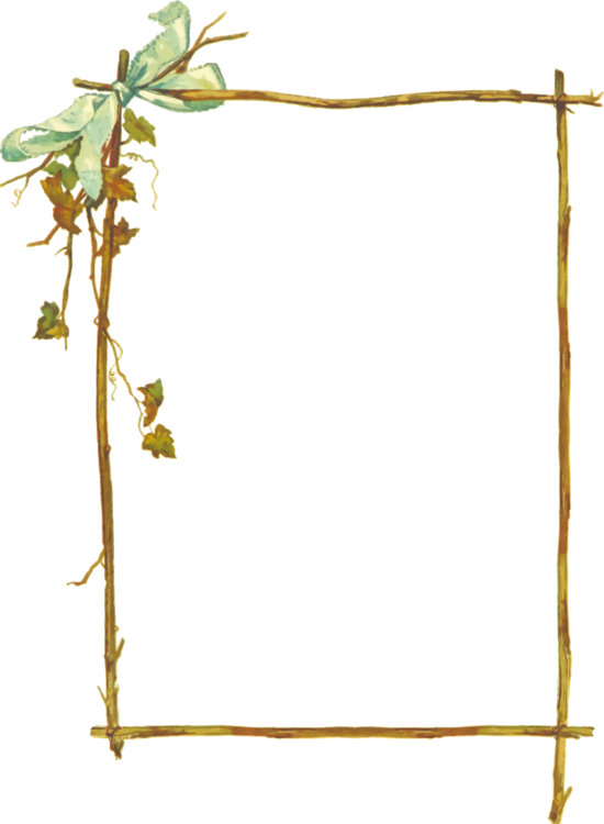 Twig vector wooden stick. Borders and frames picture